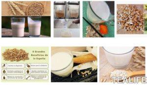 Recetas populares con leche de espelta
