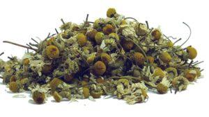Cómo Cultivar Manzanilla Orgánica en tu Casa 2